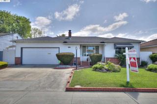 19674  Alvertus Ave  , Castro Valley, CA 94546 (#40699574) :: The Grubb Company
