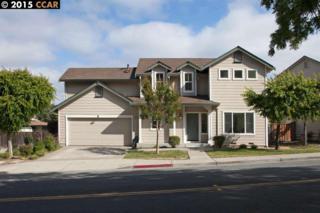 1865  Parkside Dr  , Walnut Creek, CA 94597 (#40700016) :: The Bennett Team
