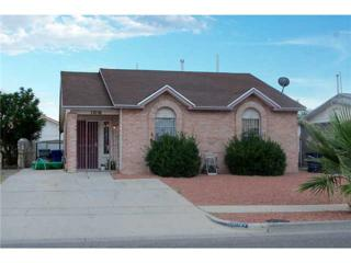 12116  Tower View Drive  , El Paso, TX 79936 (MLS #558860) :: One Realty El Paso