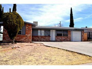 2140  Septiembre Drive  , El Paso, TX 79935 (MLS #560968) :: The Brian Burds Home Selling Team