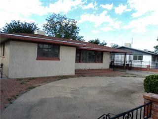 1315  Idlewilde Drive  , El Paso, TX 79925 (MLS #561186) :: The Brian Burds Home Selling Team
