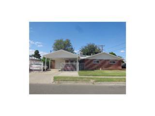 9705  Bermuda Avenue  , El Paso, TX 79925 (MLS #561220) :: The Brian Burds Home Selling Team