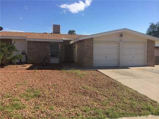 11156  Shiner Avenue  , El Paso, TX 79936 (MLS #561222) :: The Brian Burds Home Selling Team
