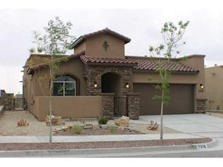 7376  Golden Sage Drive  , El Paso, TX 79911 (MLS #561225) :: The Brian Burds Home Selling Team