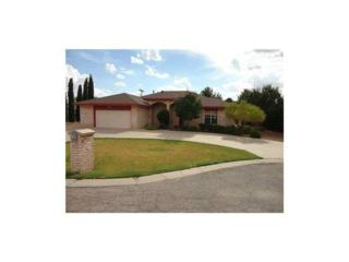 5377  Country Oaks Drive  , El Paso, TX 79932 (MLS #561589) :: One Realty El Paso