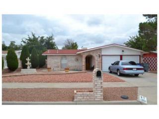 11160  Skipper Drive  , El Paso, TX 79936 (MLS #562345) :: One Realty El Paso