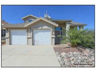 705  Teichelkamp Drive  , El Paso, TX 79928 (MLS #562548) :: One Realty El Paso
