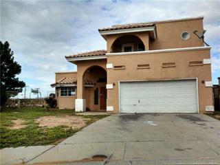 12217  Robert Dahl Drive  , El Paso, TX 79938 (MLS #562710) :: One Realty El Paso