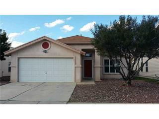 669  Laramie River Avenue  , El Paso, TX 79932 (MLS #562799) :: One Realty El Paso