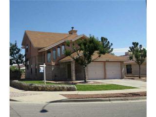 3020  Nancy Mcdonald Drive  , El Paso, TX 79936 (MLS #562800) :: One Realty El Paso