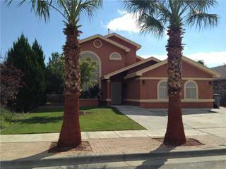 3076  Royal Crest Street  , El Paso, TX 79936 (MLS #563766) :: The Brian Burds Home Selling Team