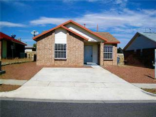 11741  Riverstone Drive  , El Paso, TX 79936 (MLS #564441) :: The Brian Burds Home Selling Team