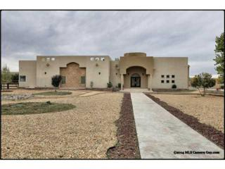 4005  Appaloosa Drive  , Sunland Park, NM 88063 (MLS #565445) :: One Realty El Paso
