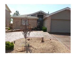 1213  Velma Miles Place  , El Paso, TX 79912 (MLS #569672) :: The Brian Burds Home Selling Team