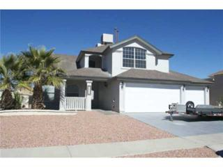 12413  Tierra Nogal Drive  , El Paso, TX 79938 (MLS #569731) :: The Brian Burds Home Selling Team