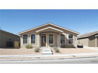 3909  Hueco Valley Drive  , El Paso, TX 79938 (MLS #569824) :: The Brian Burds Home Selling Team