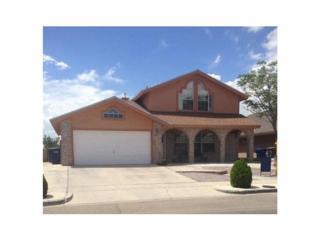 1365  John Phelan Drive  , El Paso, TX 79936 (MLS #570007) :: The Brian Burds Home Selling Team