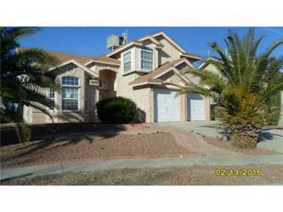 12225  Red Sun Drive  , El Paso, TX 79938 (MLS #570864) :: The Brian Burds Home Selling Team