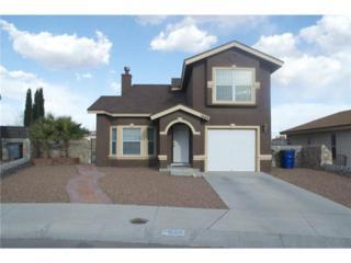 1668  Saint James Street  , El Paso, TX 79936 (MLS #570928) :: The Brian Burds Home Selling Team