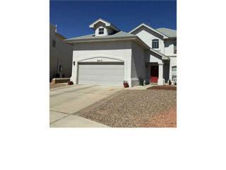3417  Sonia Rose Place  , El Paso, TX 79936 (MLS #571794) :: One Realty El Paso