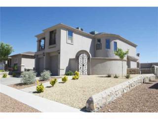 7376  Gulf Creek Drive  , El Paso, TX 79911 (MLS #573056) :: The Brian Burds Home Selling Team