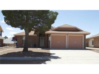 7609  Waterhouse Drive  , El Paso, TX 79912 (MLS #573058) :: The Brian Burds Home Selling Team