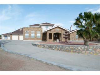 12216  Roberta Lynne Drive  , El Paso, TX 79936 (MLS #573825) :: The Brian Burds Home Selling Team