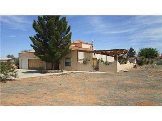 14190  Wild Flower Drive  , El Paso, TX 79938 (MLS #575157) :: One Realty El Paso