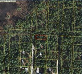 Lot 24  Blk 124 Town Of Santa Rosa  , Santa Rosa Beach, FL 32459 (MLS #710381) :: ResortQuest Real Estate