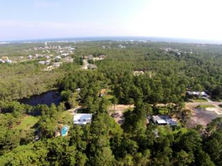 176  Cypress Pond Road  , Santa Rosa Beach, FL 32459 (MLS #710459) :: ResortQuest Real Estate