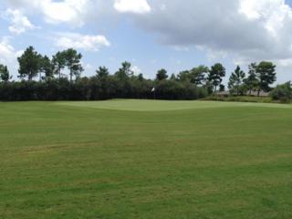 Lot 23B  Brushed Dune Circle  , Freeport, FL 32439 (MLS #712441) :: ResortQuest Real Estate