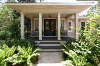 124  Wild Blueberry Way  , Point Washington, FL 32459 (MLS #712713) :: Scenic Sotheby's International Realty
