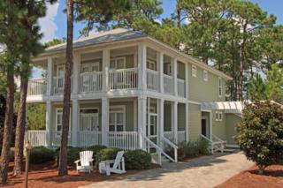 336  Cassine Garden Circle  , Santa Rosa Beach, FL 32459 (MLS #714350) :: ResortQuest Real Estate