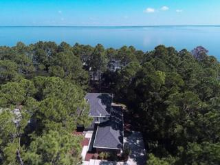 1085 E Nursery Road  , Santa Rosa Beach, FL 32459 (MLS #715098) :: Scenic Sotheby's International Realty