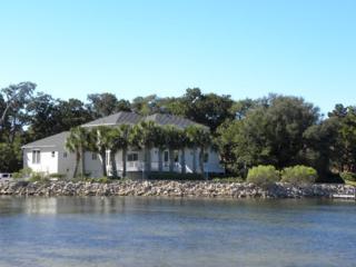 767  Blvd Of The Champions  , Shalimar, FL 32579 (MLS #716286) :: ResortQuest Real Estate