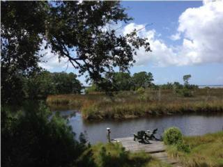 424  Sunset Trail  , Freeport, FL 32439 (MLS #716478) :: ResortQuest Real Estate