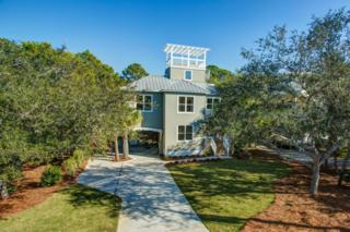 79  Loon Lake Drive  , Santa Rosa Beach, FL 32459 (MLS #718148) :: Somers & Company