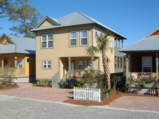 214  Hidden Lakes Circle  , Santa Rosa Beach, FL 32459 (MLS #718380) :: Somers & Company