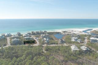 Lot 58 W Bermuda Drive  , Santa Rosa Beach, FL 32459 (MLS #719338) :: Scenic Sotheby's International Realty