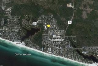 (29) Lots!  Gulfview Circle  , Santa Rosa Beach, FL 32459 (MLS #719486) :: Somers & Company