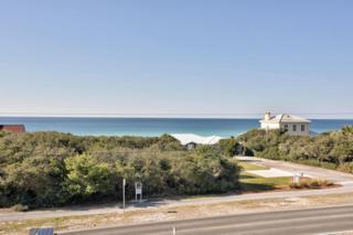 49  Seabreeze Trail  , Seacrest, FL 32413 (MLS #724459) :: Scenic Sotheby's International Realty