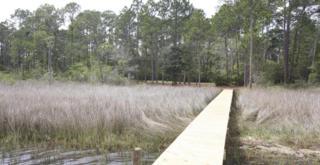 14  Woodland Bayou Drive  , Santa Rosa Beach, FL 32459 (MLS #726339) :: ResortQuest Real Estate