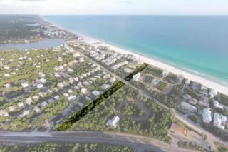 00 30A  Eastern Lake Road  , Santa Rosa Beach, FL 32459 (MLS #728218) :: Scenic Sotheby's International Realty