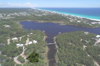 1-12  Wood Lily Lane  , Santa Rosa Beach, FL 32459 (MLS #730521) :: ResortQuest Real Estate