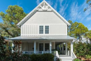 326  Canal Street  , Santa Rosa Beach, FL 32459 (MLS #719733) :: Scenic Sotheby's International Realty