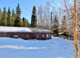 361  Ester Drive  , Fairbanks, AK 99709 (MLS #126705) :: Madden Real Estate