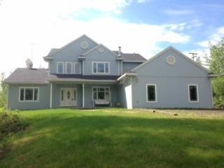 955  Luthers Loop  , Fairbanks, AK 99712 (MLS #126796) :: Madden Real Estate