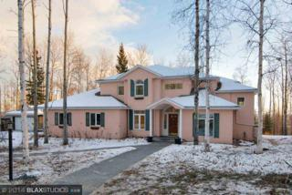 1460  Goshawk Lane  , Fairbanks, AK 99709 (MLS #126878) :: Madden Real Estate