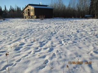 1853  Bona Street  , North Pole, AK 99705 (MLS #126893) :: Madden Real Estate