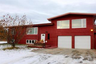 772  Foxtail Drive  , Fairbanks, AK 99712 (MLS #126894) :: Madden Real Estate